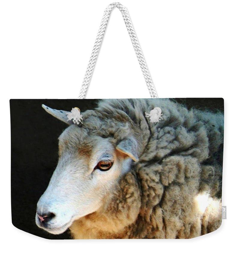 Ewe Are So Beautiful Weekender Tote Bag featuring the photograph Ewe Are So Beautiful by Ellen Henneke