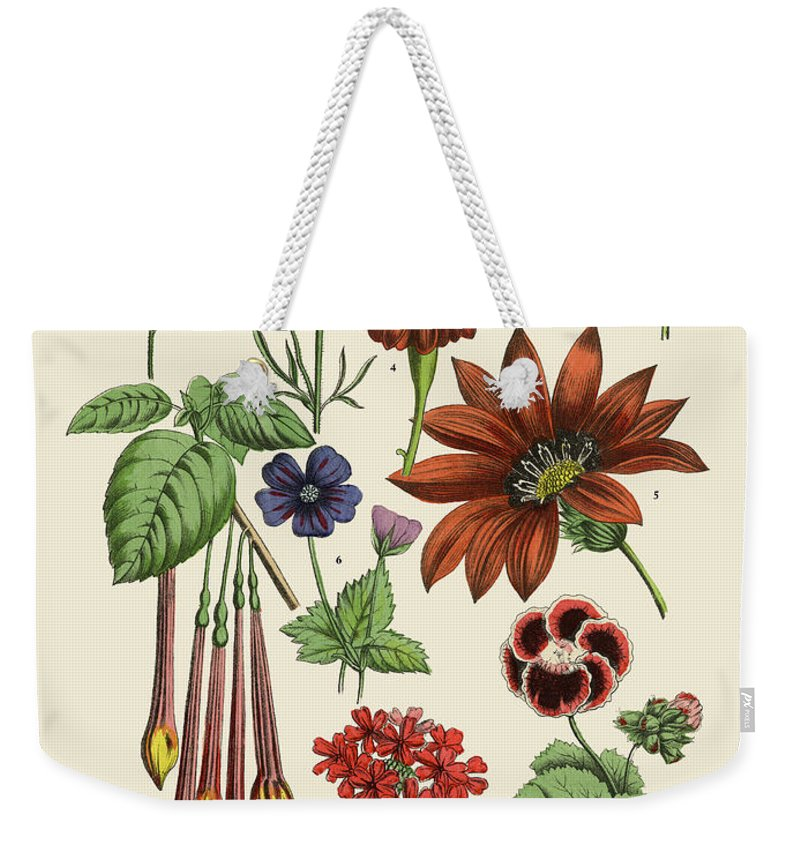 1880-1889 Weekender Tote Bag featuring the digital art Exotic Flowers Of The Garden, Victorian by Bauhaus1000