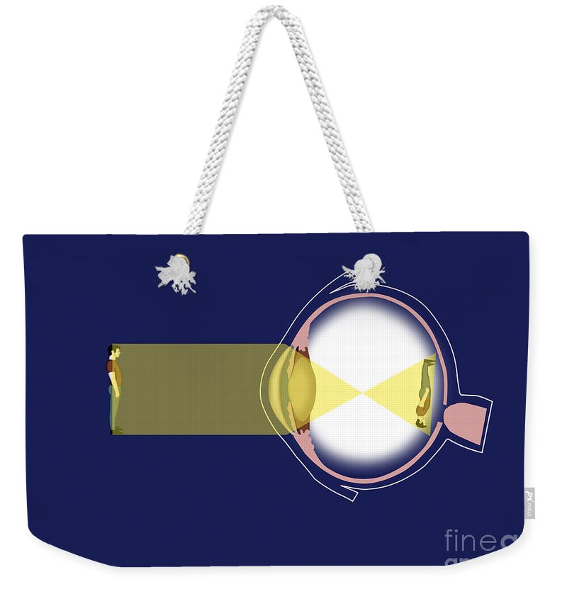 Medical Weekender Tote Bag featuring the photograph Eye Diagram by Spencer Sutton