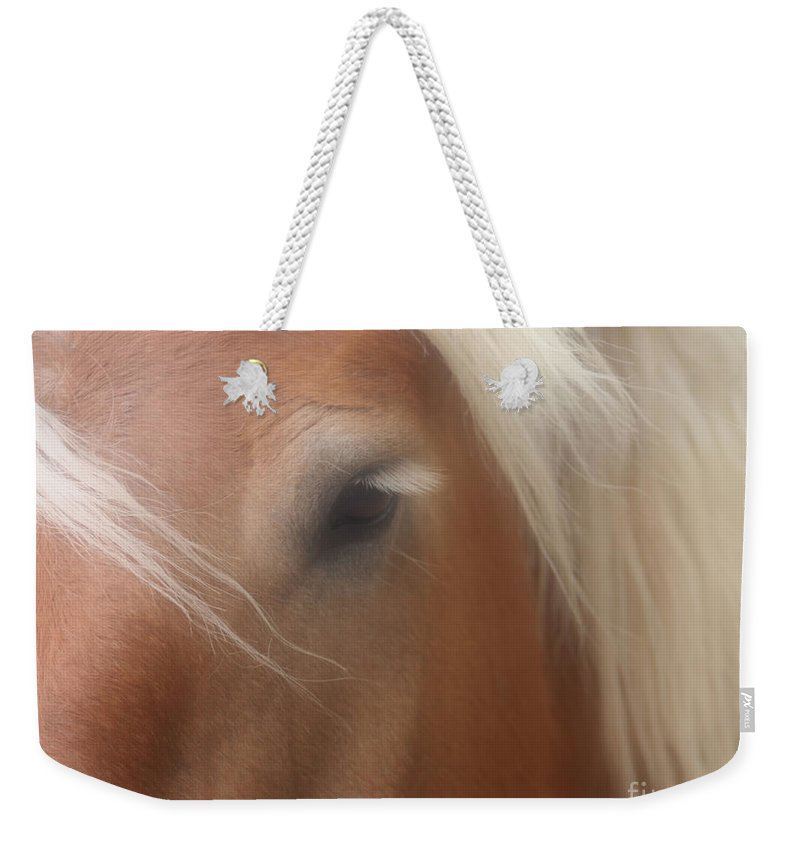Belgian Weekender Tote Bag featuring the photograph Eye Of A Belgian Horse by Smilin Eyes Treasures