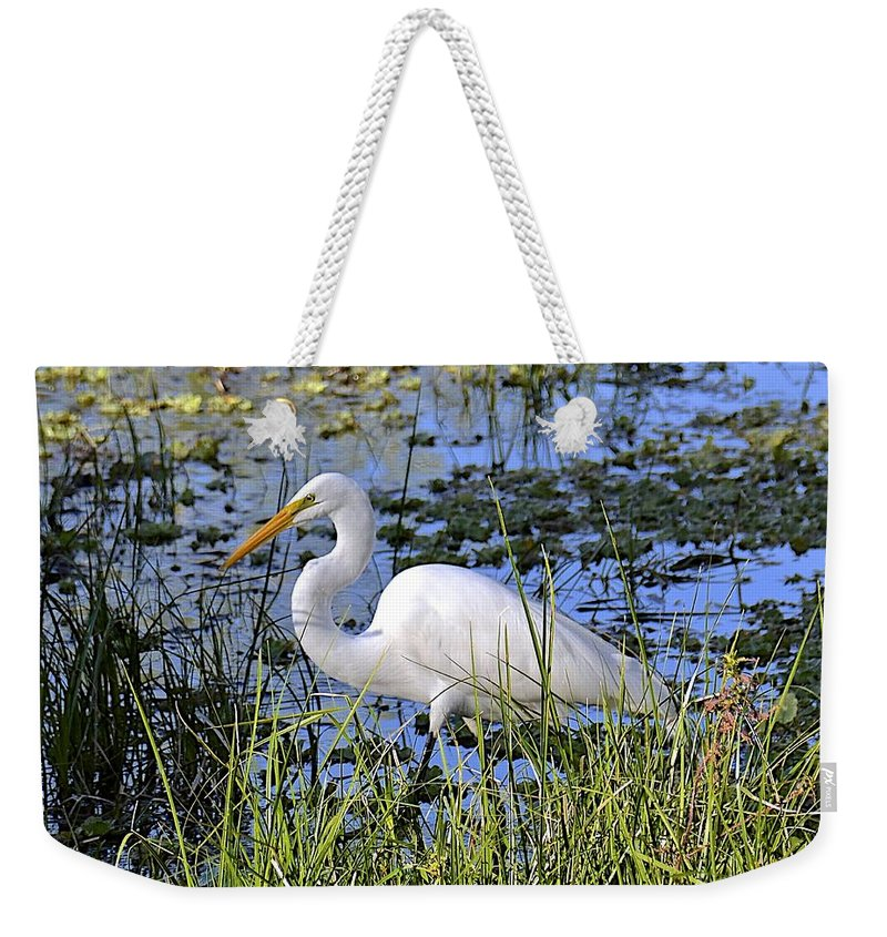 Egret Weekender Tote Bag featuring the photograph Eye On The Prize by Carol Bradley