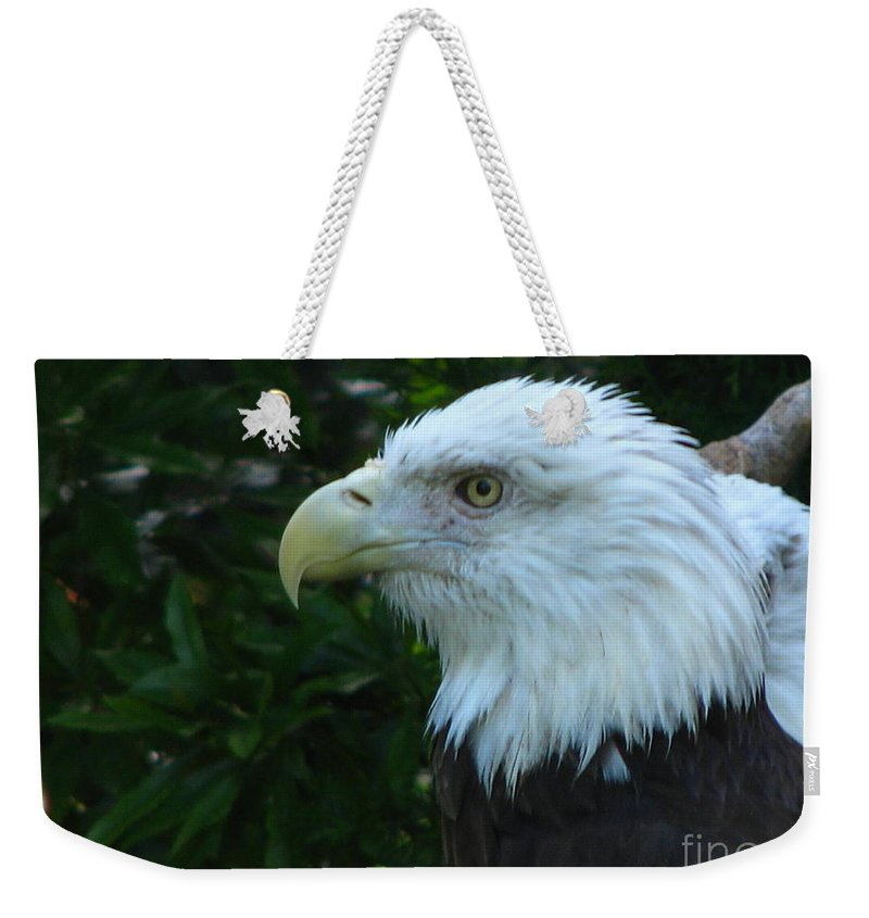 Eagle Weekender Tote Bag featuring the photograph Eyecon by Greg Patzer
