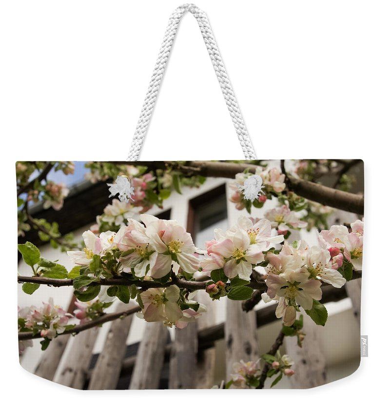 Facades Weekender Tote Bag featuring the photograph Facades And Fruit Trees by Georgia Mizuleva