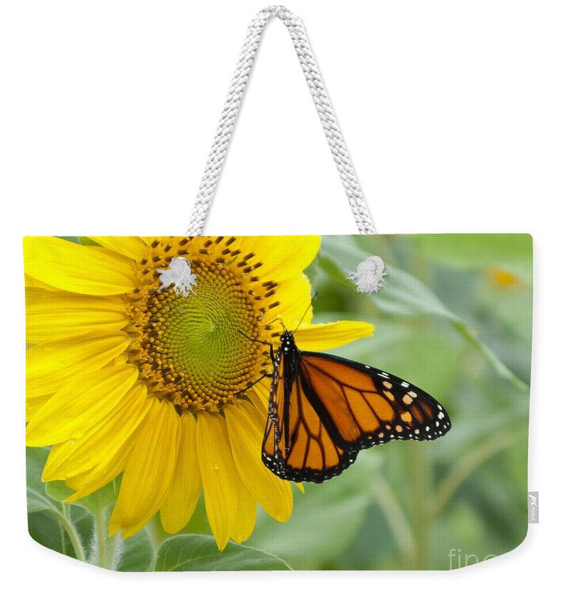 Sunflower Weekender Tote Bag featuring the photograph Face To Face by Ann Horn