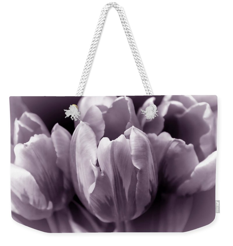 Tulip Weekender Tote Bag featuring the photograph Fading Tulip Flowers Lavender Gray Monochrome by Jennie Marie Schell