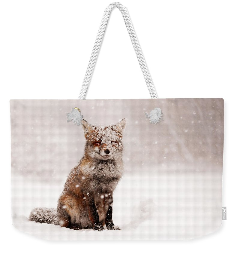 Fox Weekender Tote Bag featuring the photograph Fairytale Fox _ Red Fox In A Snow Storm by Roeselien Raimond