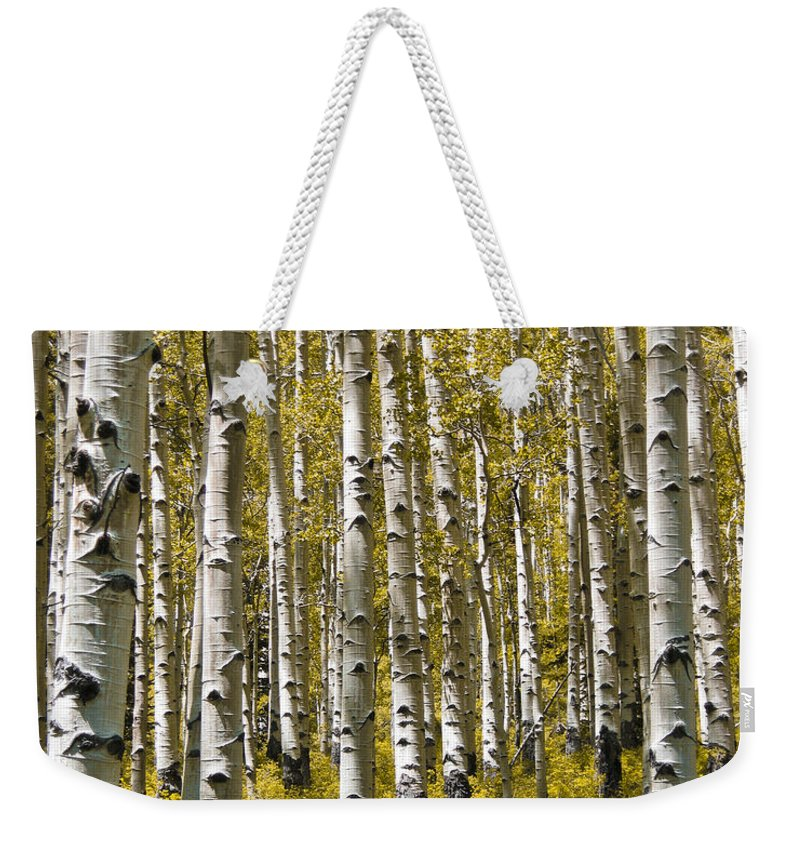 3scape Photos Weekender Tote Bag featuring the photograph Fall Aspens by Adam Romanowicz