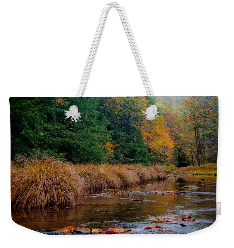 Weekender Tote Bag featuring the photograph Fall Beauty by Scott Hafer