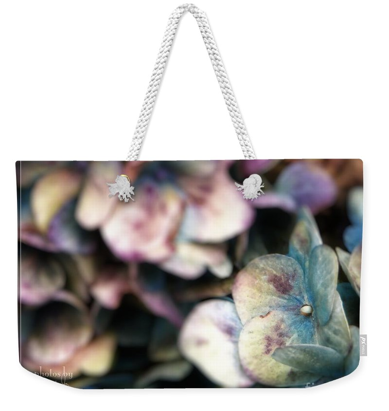 Flower Weekender Tote Bag featuring the photograph Fall Blues by Jamie Johnson