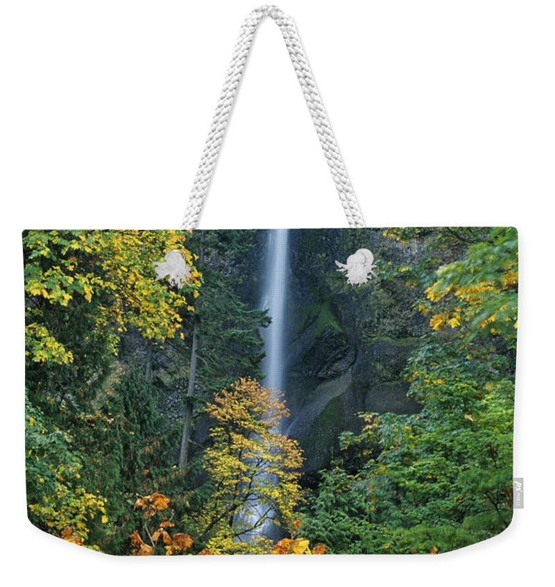 North America Weekender Tote Bag featuring the photograph Fall Colors Frame Multnomah Falls Columbia River Gorge Oregon by Dave Welling