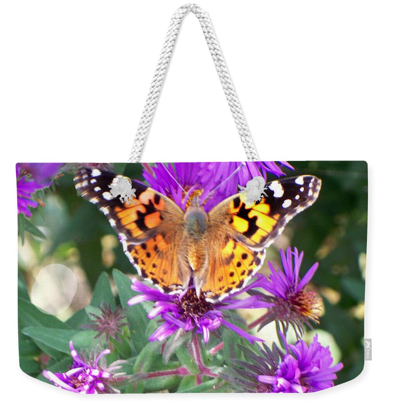 Butterfly Weekender Tote Bag featuring the photograph Fall Flutterby by Sylvia Thornton
