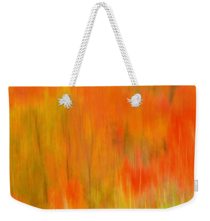 Fall Foliage Weekender Tote Bag featuring the photograph Fall Foliage Abstract by Lingfai Leung