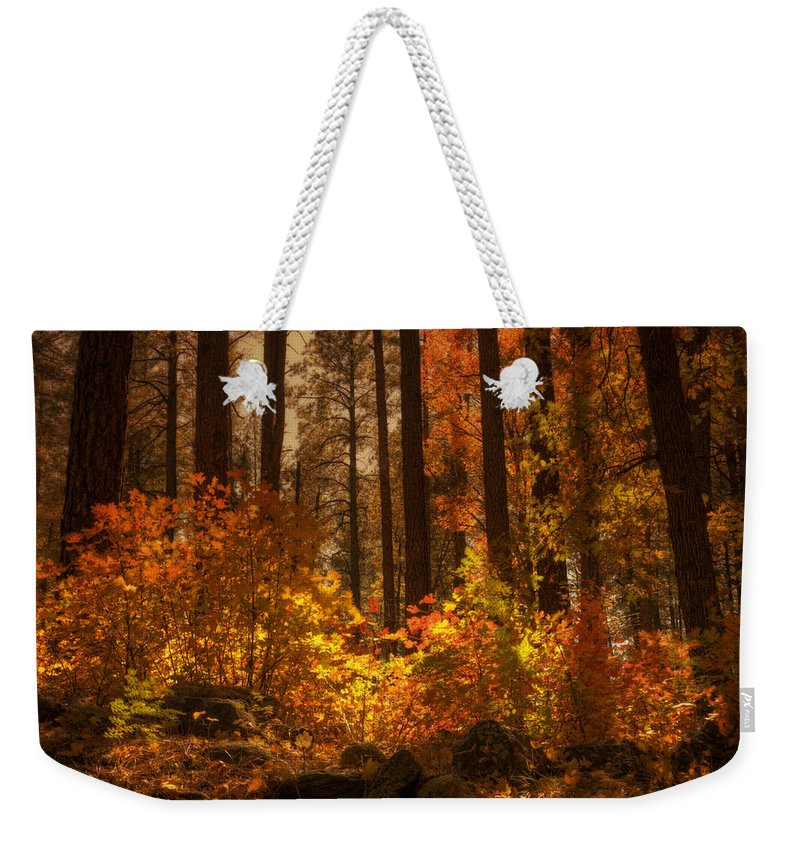Fall Weekender Tote Bag featuring the photograph Fall Forest by Saija Lehtonen