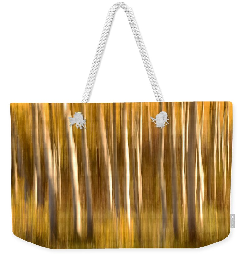 Aspen Weekender Tote Bag featuring the photograph Fall In The Wasatch by Dustin LeFevre