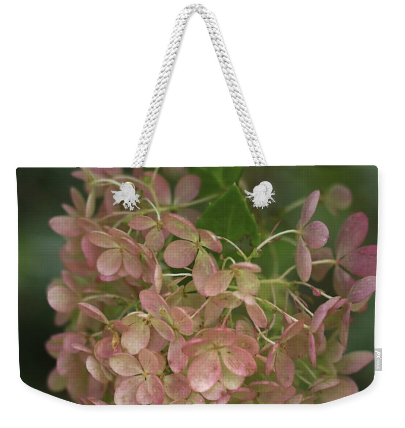 Hydrangea Weekender Tote Bag featuring the photograph Fall Is Near by Deborah Benoit