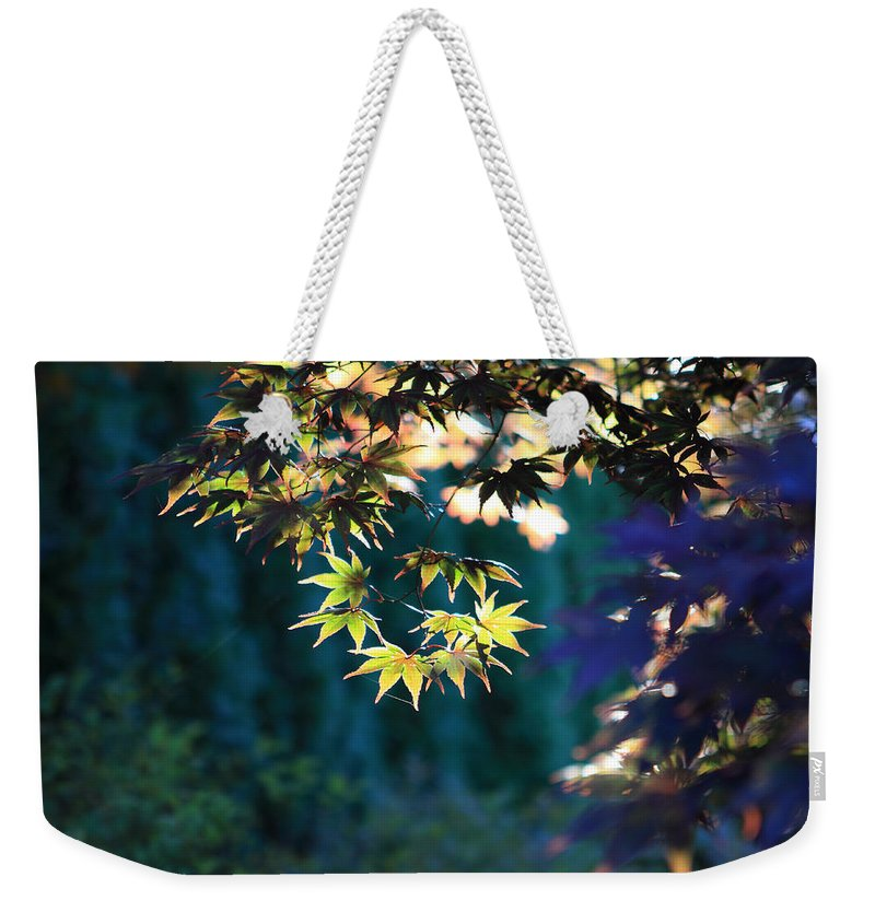 Fall Weekender Tote Bag featuring the photograph Fall Leaves by John Lan