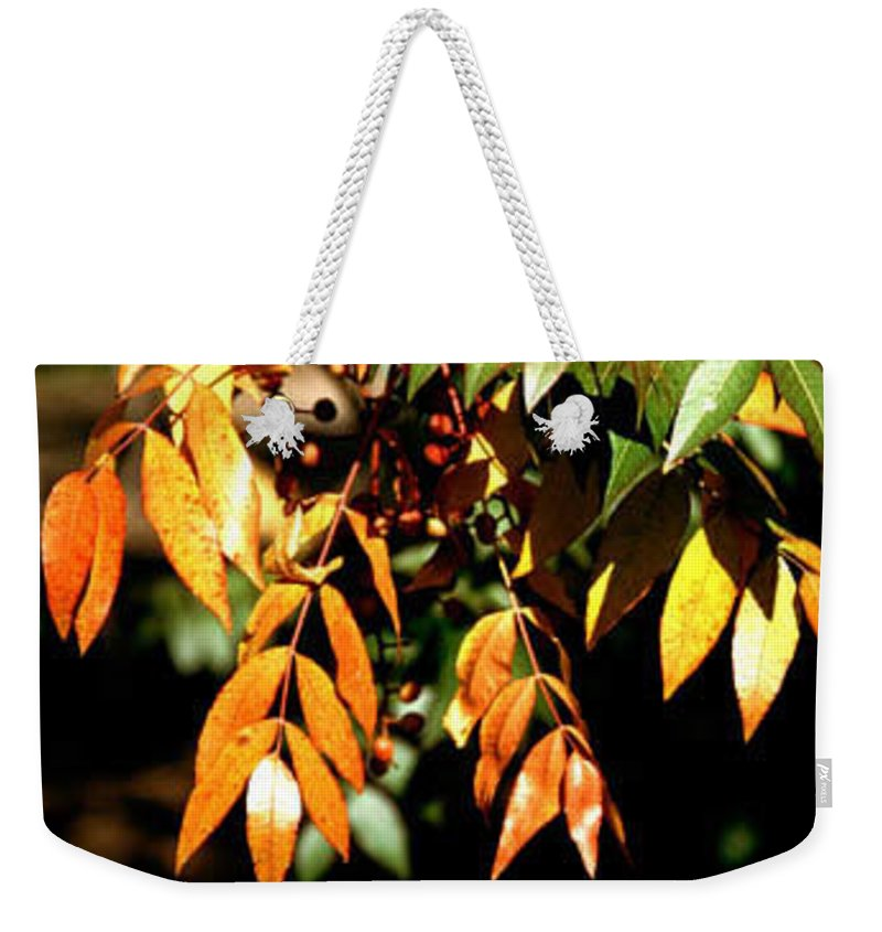 Fall Color Weekender Tote Bag featuring the photograph Fall Leaves by Kathy McClure