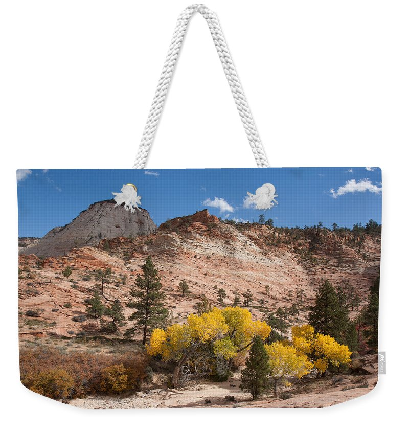 Nature Weekender Tote Bag featuring the photograph Fall Season At Zion National Park by John M Bailey