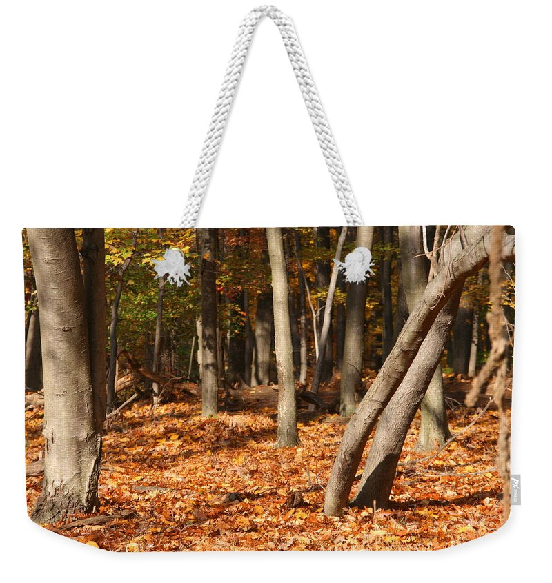 Leaves Weekender Tote Bag featuring the photograph Fallen Leaves by Michael Porchik