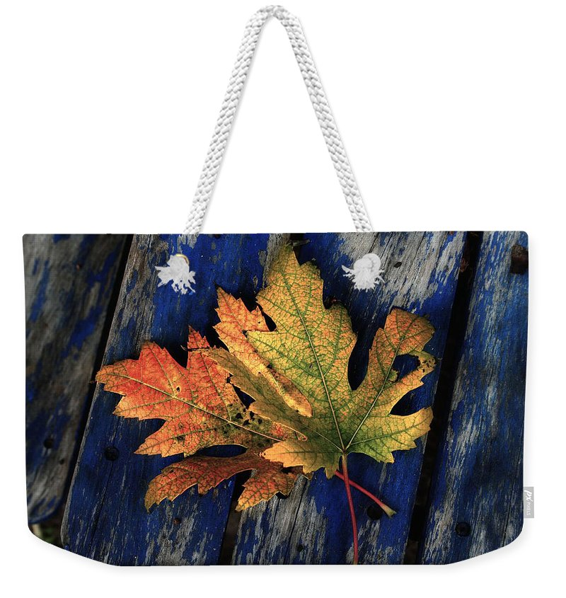 Nature Weekender Tote Bag featuring the photograph Falling For Colour by Linda Sannuti