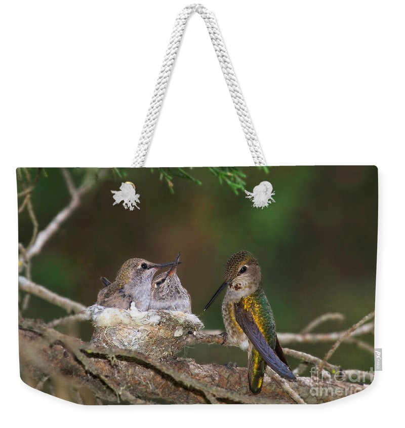 Hummingbird Weekender Tote Bag featuring the photograph Family Love by Beth Sargent