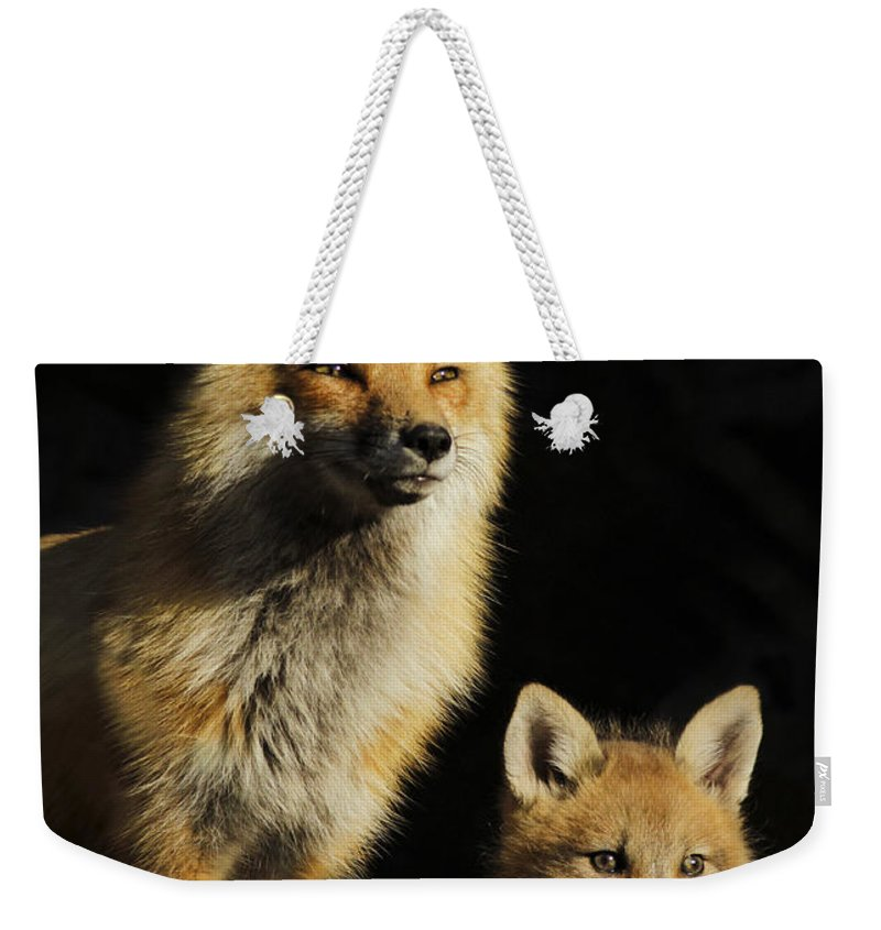 Pup Weekender Tote Bag featuring the photograph Family Portrait by Mircea Costina Photography