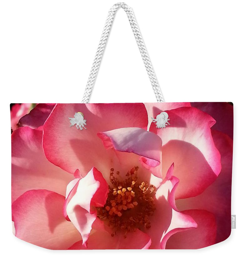Rose Weekender Tote Bag featuring the photograph Fancy Flaminco Rose by Caryl J Bohn