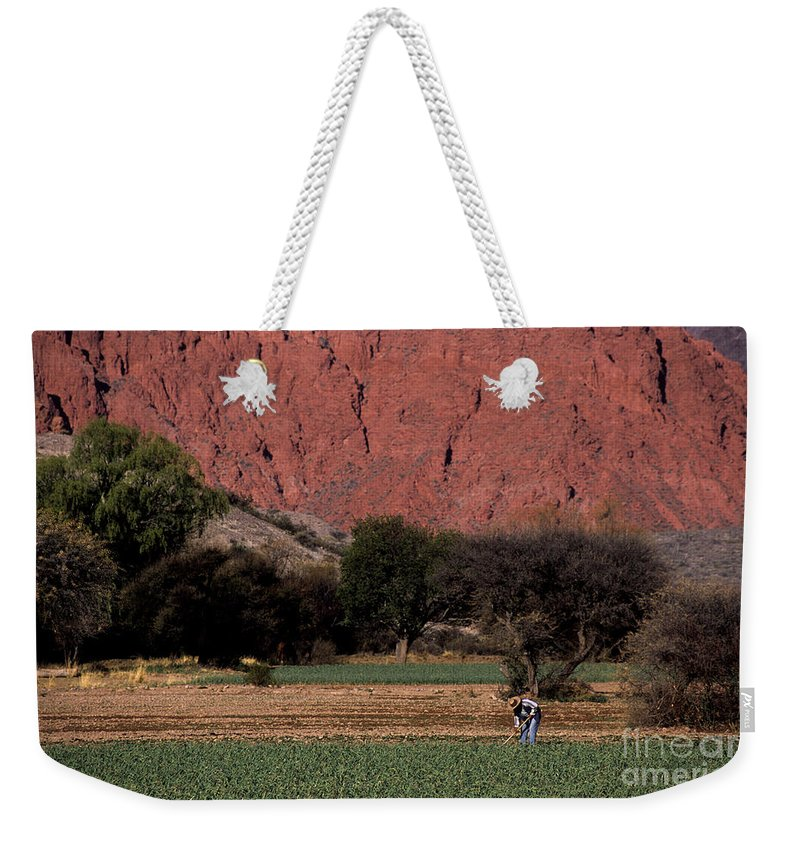 Argentina Weekender Tote Bag featuring the photograph Farmer In Field In Northern Argentina by James Brunker