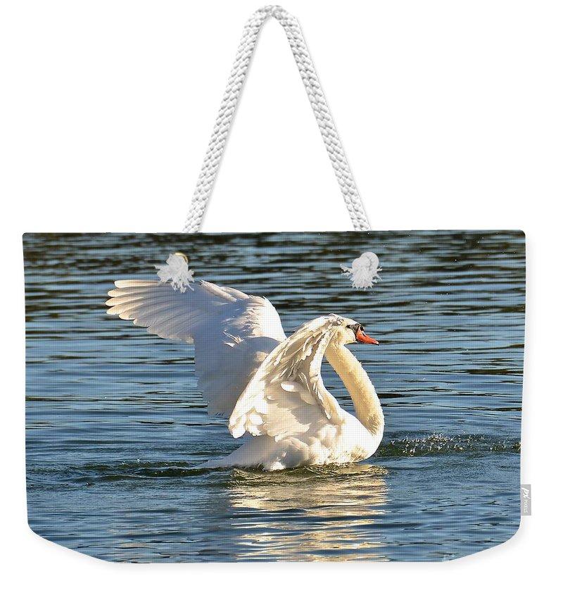 Swan Weekender Tote Bag featuring the photograph Fast Get Away by Carol Bradley