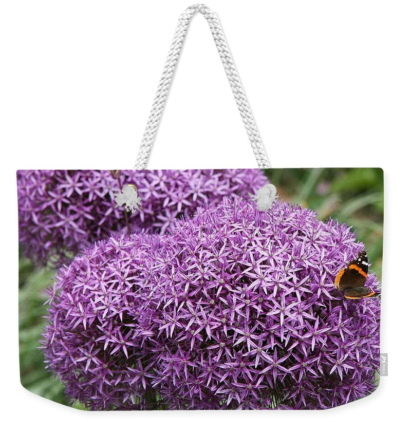 Allium Weekender Tote Bag featuring the photograph Favorite Butterfly Spot by Christiane Schulze Art And Photography
