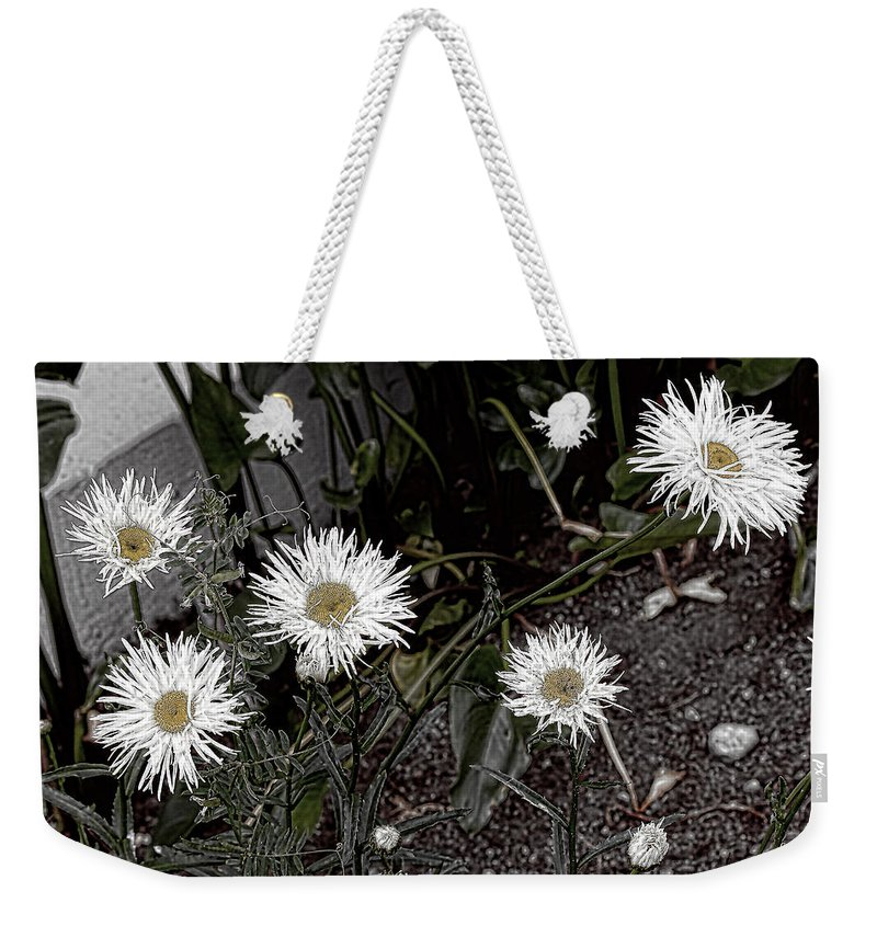 Daisies Weekender Tote Bag featuring the photograph Feathered Daisy by Cathy Anderson