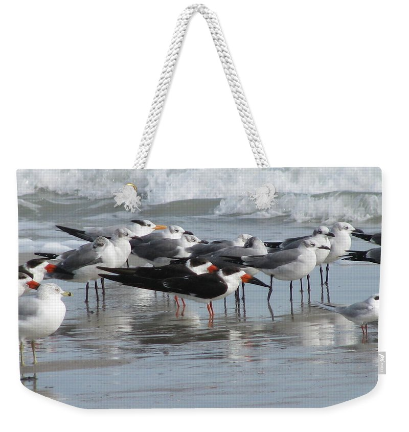 Animals Weekender Tote Bag featuring the photograph Feathered Friends by Ellen Meakin