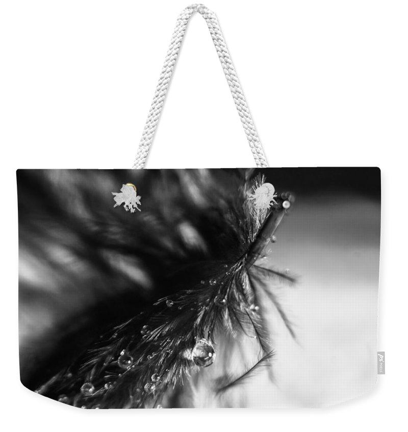Feather Weekender Tote Bag featuring the photograph Feathery Drop by Lauri Novak