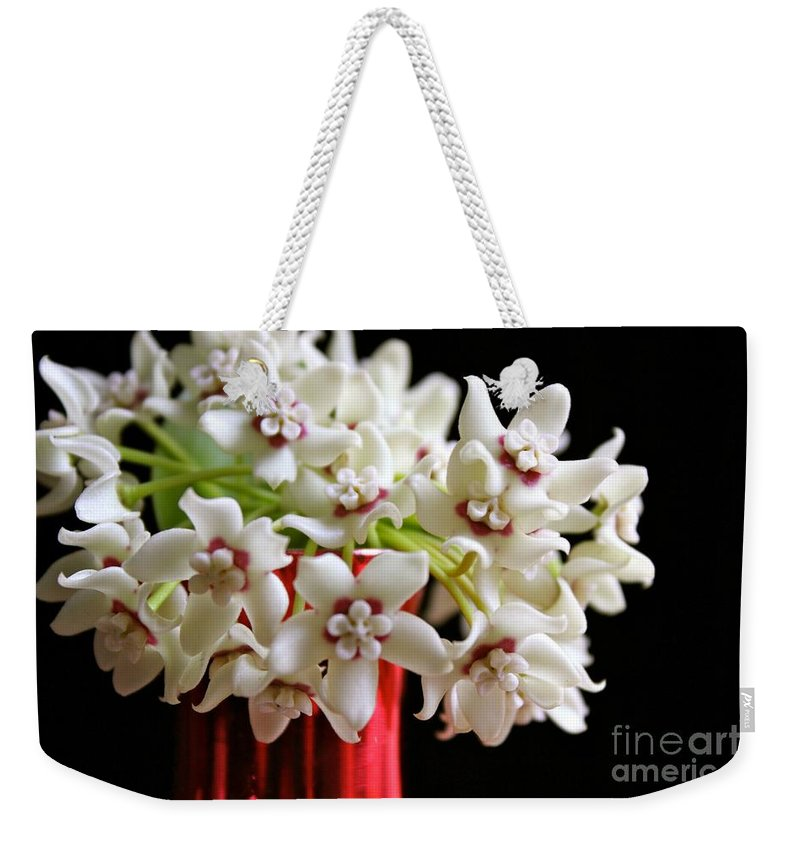 Sarcostemma Clausum Weekender Tote Bag featuring the photograph Federico's Dream by The Art of Alice Terrill