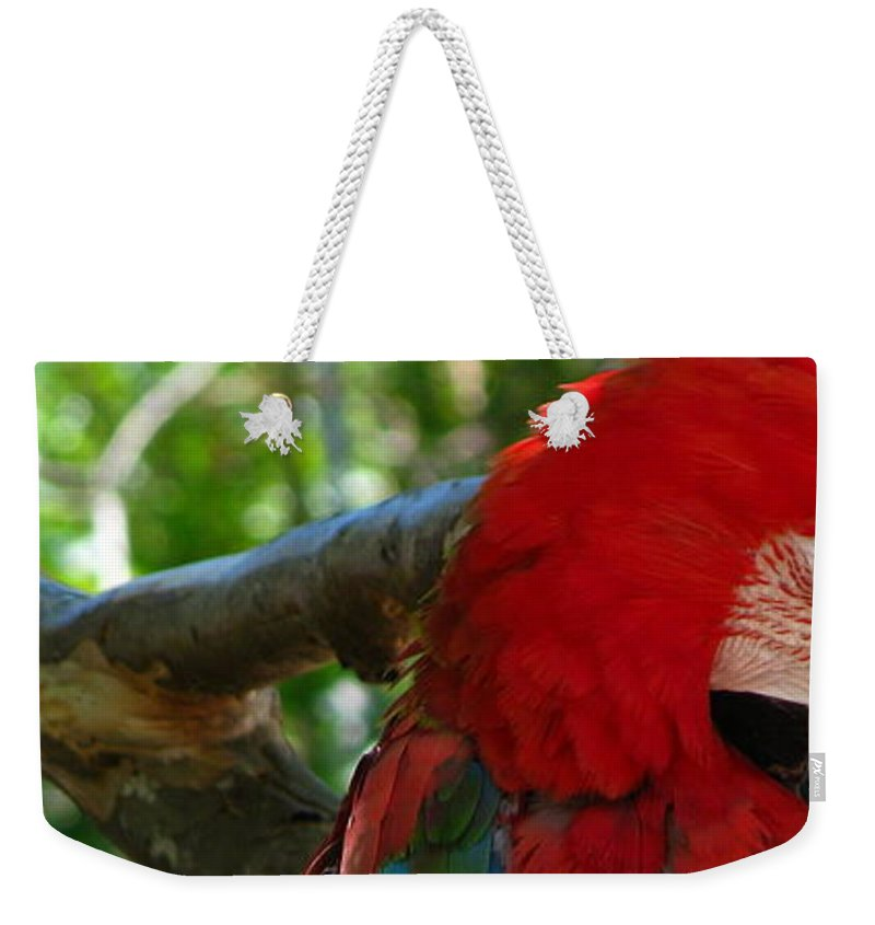 Patzer Weekender Tote Bag featuring the photograph Feeling A Little Red by Greg Patzer
