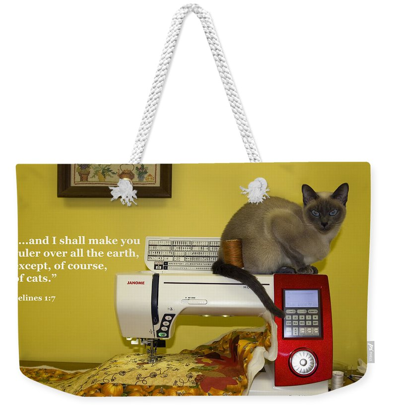 Tonkinese Cat Weekender Tote Bag featuring the photograph Felines Rule by Sally Weigand