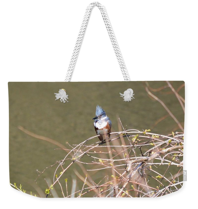 Belted Kingfisher Weekender Tote Bag featuring the photograph Female Belted Kingfisher by Bonfire Photography