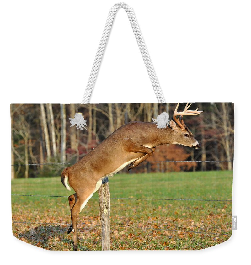 Fence Weekender Tote Bag featuring the photograph Fence Jumper by Todd Hostetter