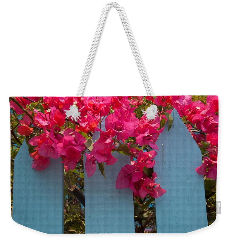 Roatan Weekender Tote Bag featuring the photograph Fence With Bouganvillia by Susan Rovira