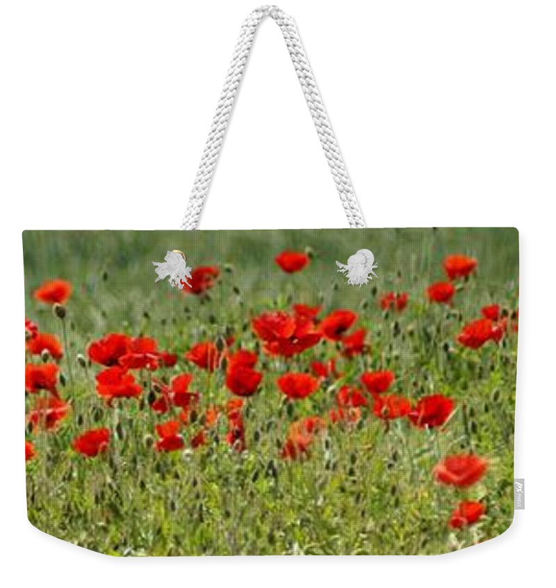 Poppies Weekender Tote Bag featuring the photograph Field Of Poppies by Carol Lynch