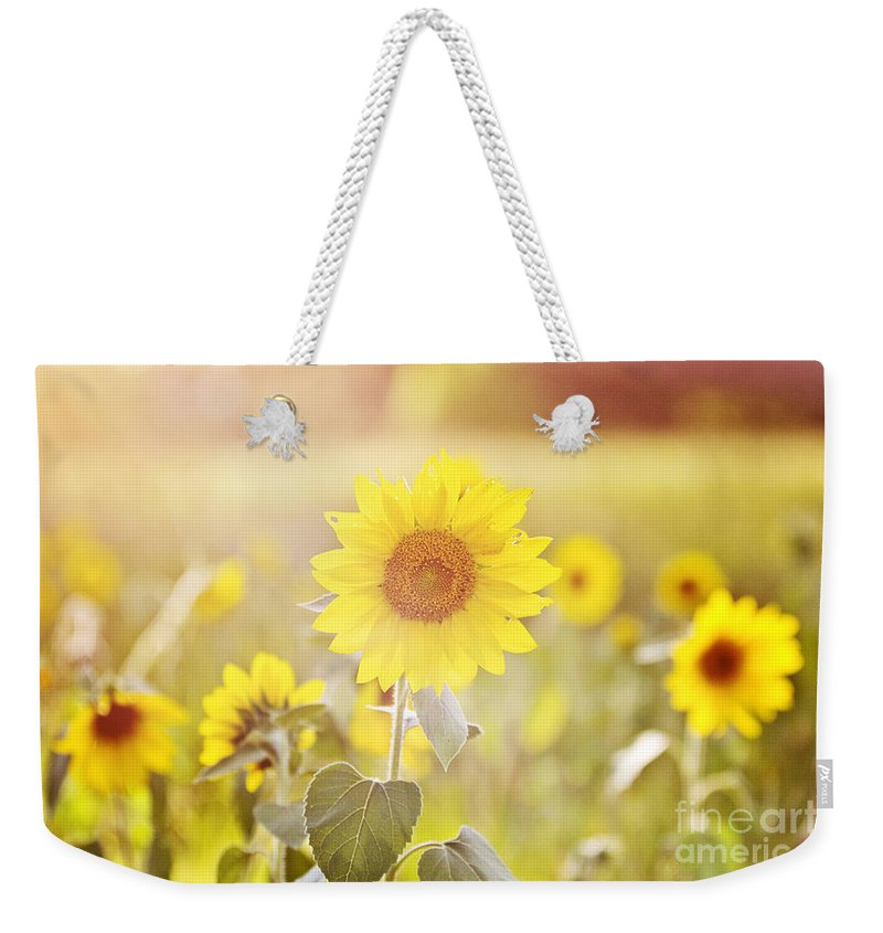 Sunflower Weekender Tote Bag featuring the photograph Field Of Sunshine by Scott Pellegrin