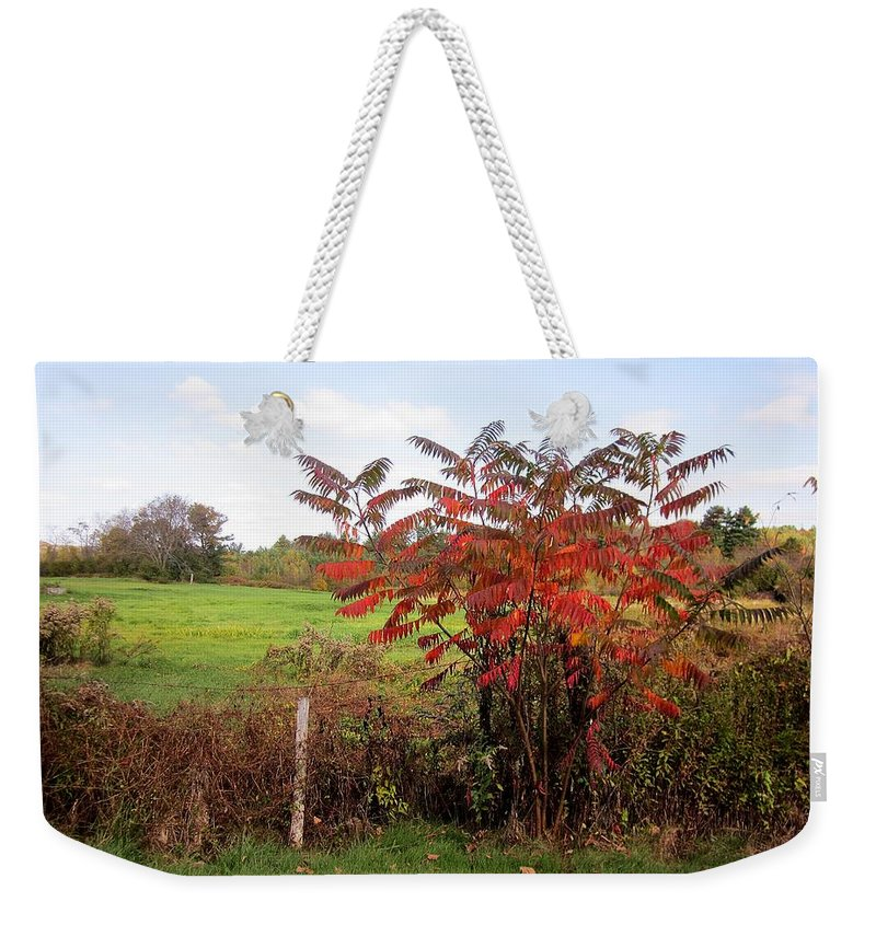 Field Weekender Tote Bag featuring the photograph Field With Sumac In Autumn by MTBobbins Photography