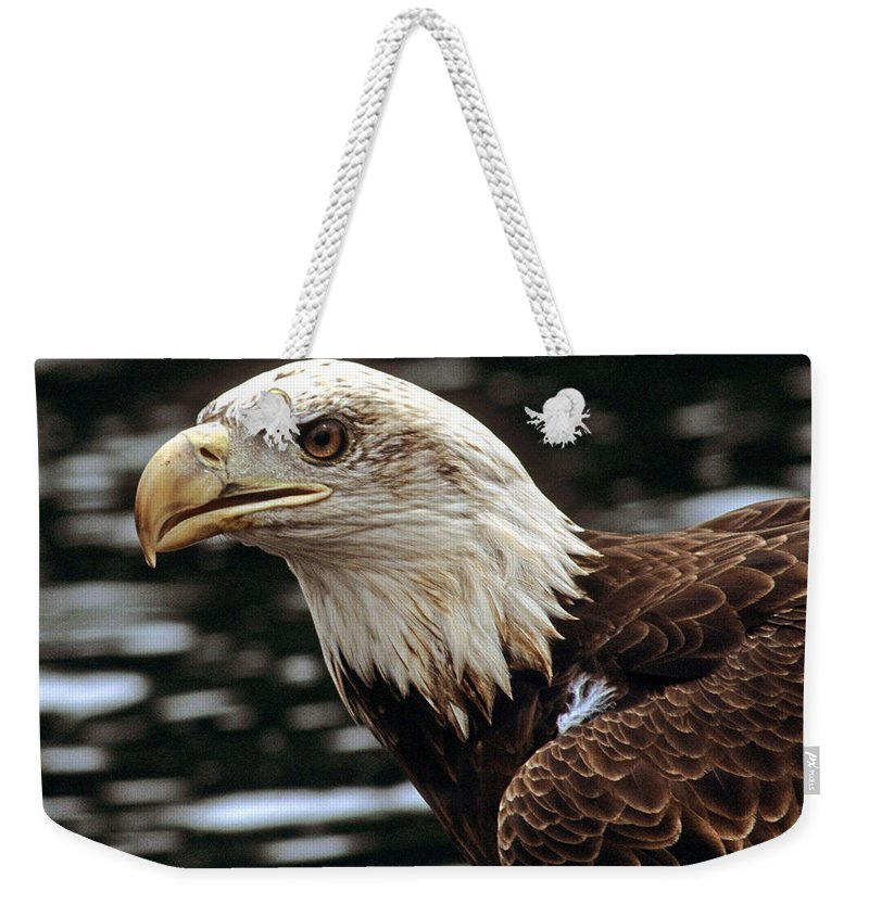 Eagle Weekender Tote Bag featuring the photograph Fierce Bald Eagle by Larry Allan