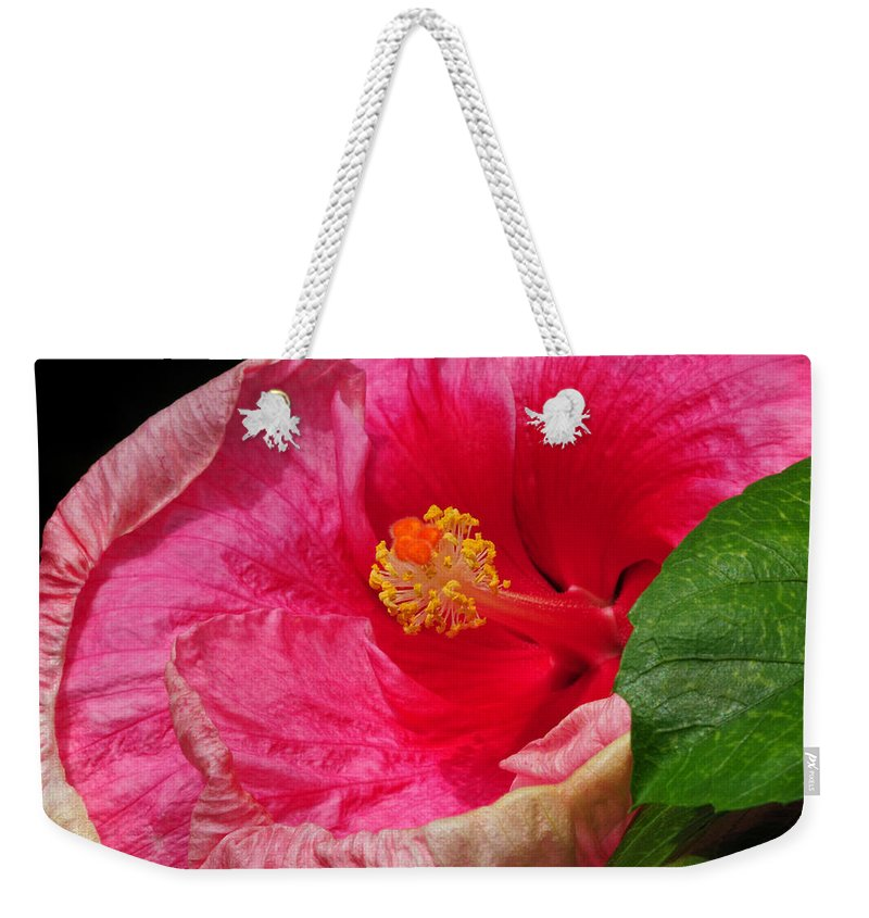 Hibiscus Weekender Tote Bag featuring the photograph Fiery Hibiscus by Dave Mills
