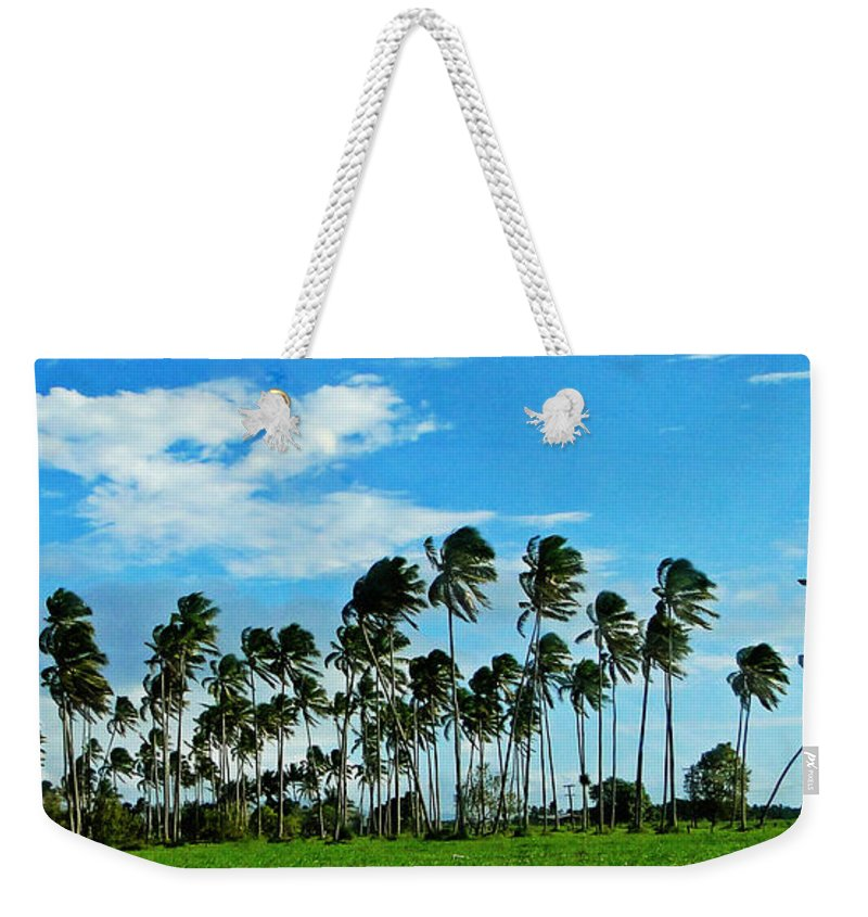 Landscape Weekender Tote Bag featuring the photograph Fiji by Ben Yassa