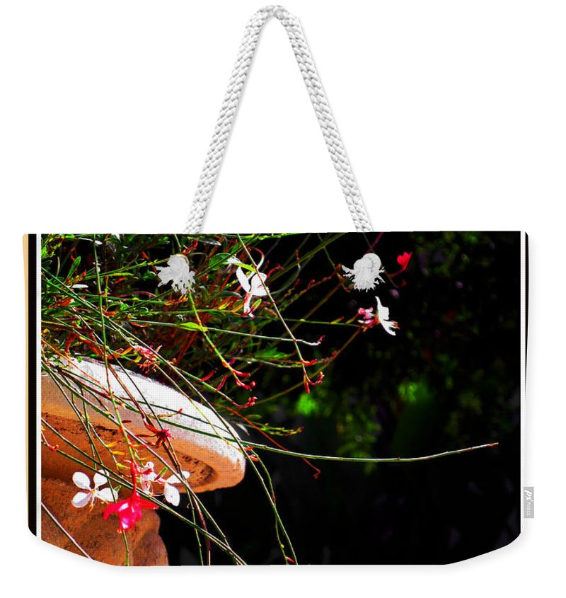 Filigree Weekender Tote Bag featuring the photograph Filigree 4 In A Frame by Susanne Van Hulst