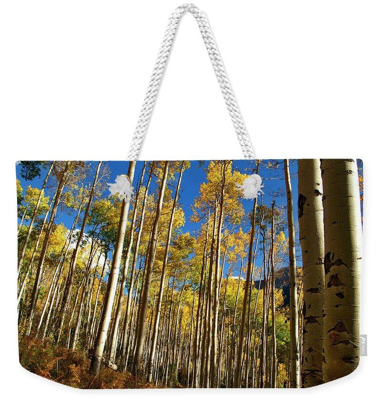 Independence Pass Weekender Tote Bag featuring the photograph Finding You by Jeremy Rhoades
