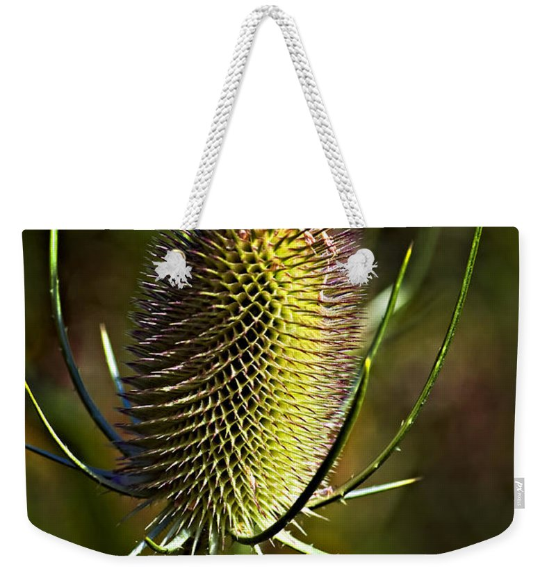 Weed Weekender Tote Bag featuring the photograph Finis by Steve Harrington