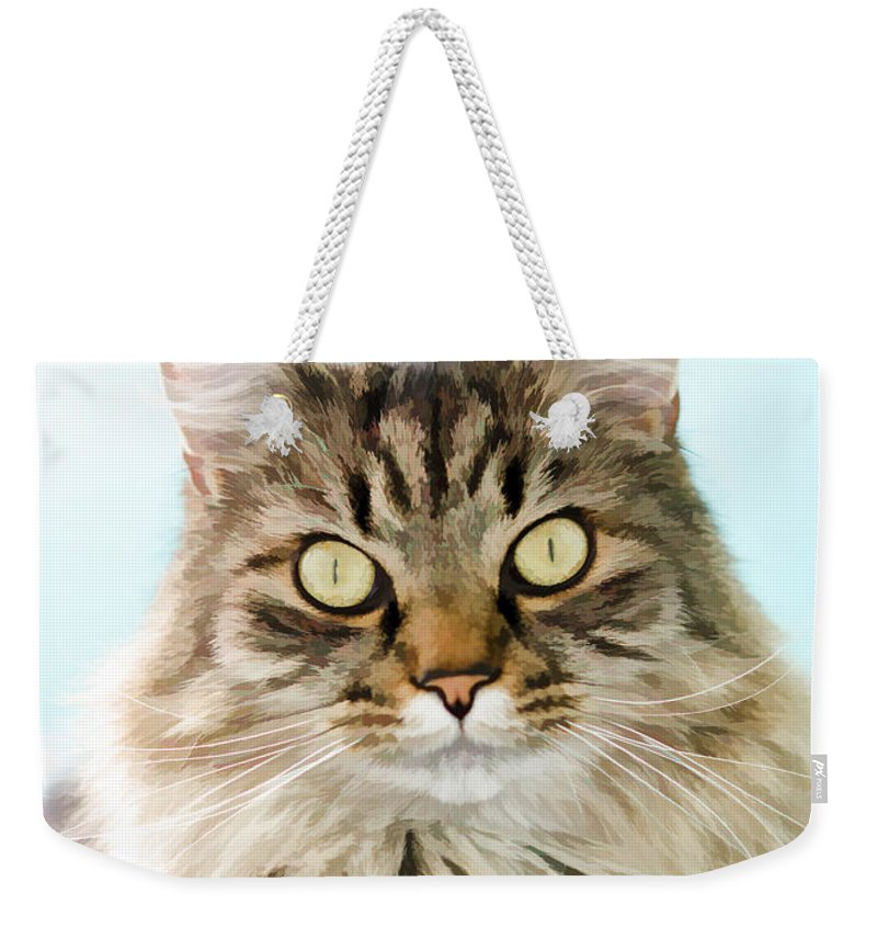 Animal Weekender Tote Bag featuring the photograph Finn by Donna Doherty