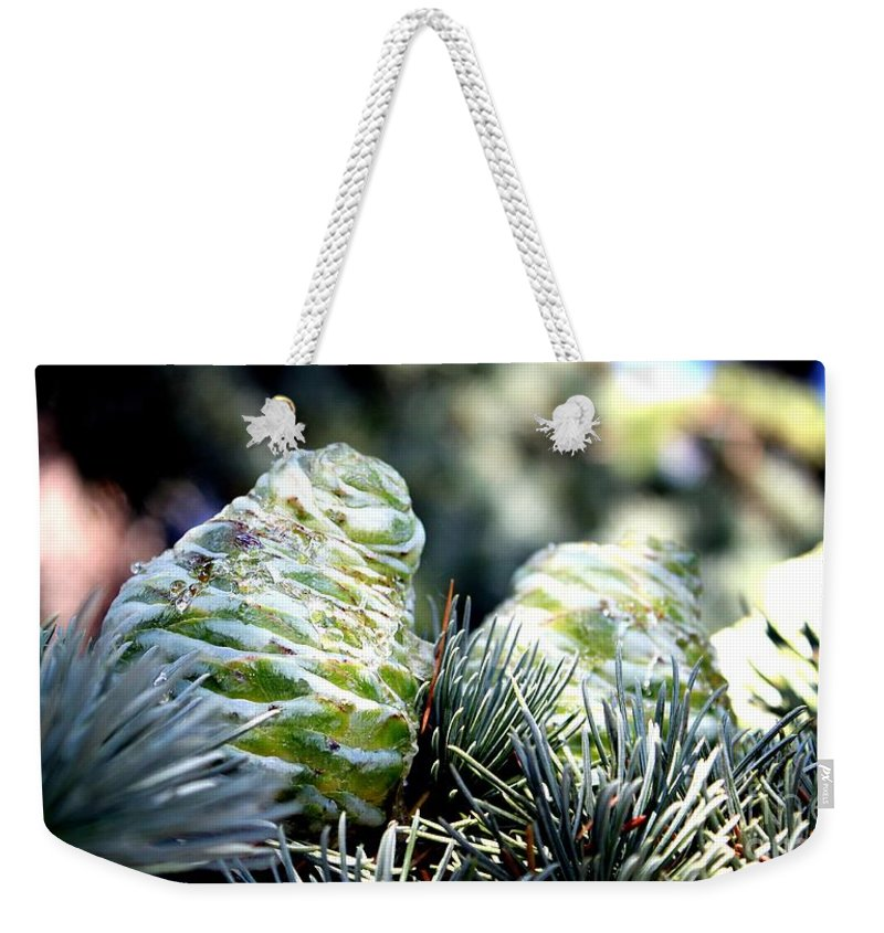 Fir Weekender Tote Bag featuring the photograph Fir Cone by Henrik Lehnerer